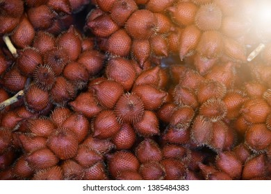 Salacca zalacca is a sweet red fruit. Salak (Salacca zalacca) is a species of palm tree (family Arecaceae) native to Java and Sumatra in Indonesia is fruit have a pricker on skin in Thailand and asia.