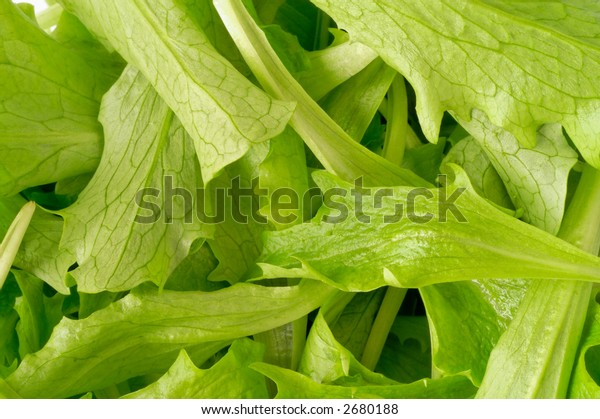 Salad closeup (top)