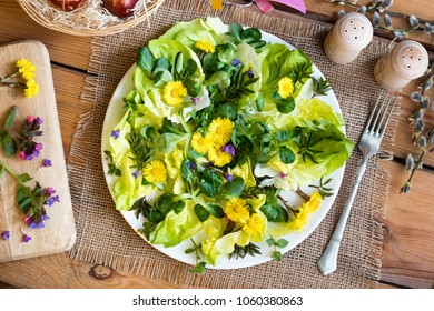 Salad with coltsfoot, chickweed, ground elder leaves and other wild edible plants