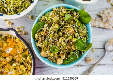 Salad with fried sprouts and fresh broccoli sprouts. Healthy diet and vegetarian food.