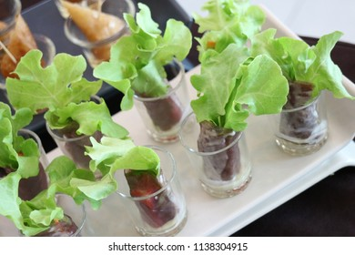 salad in the glass