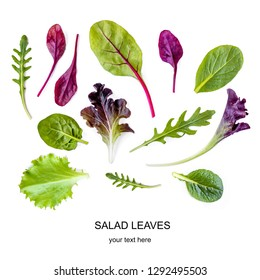 Salad leaves Pattern. Isolated Mix Salad leaves with Spinach, Chard, lettuce, rucola on the white background.