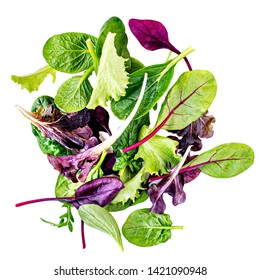 Salad mix with rucola, frisee, radicchio, chard and lamb's lettuce. Green salad Isolated on white background