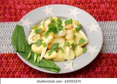 Salad of potatoes and dandelion