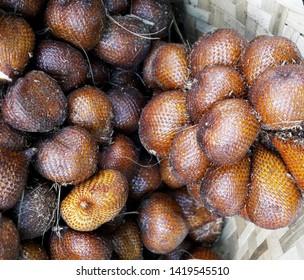 Salak ( Salacca zalacca) Tropical Fruit Indonesia Asia