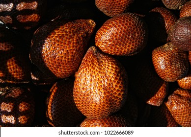 Salak (Salacca/Zalacca) a tropical snake fruit from Indonesia