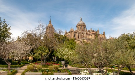 SALAMANCA, SPAIN - APRIL 4, 2019: view of the cathedral from the garden of Calisto and Melibea