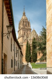 SALAMANCA, SPAIN - APRIL 4, 2019: lateral facade of the cathedral