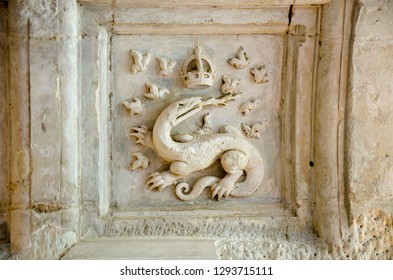 Salamander on Chenonceaux Castle of François I