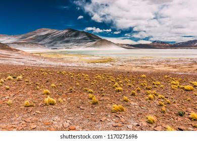 Salar de Talar in the Chilean plateau of the Atacama Desert