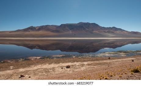 Salar de Tara, Atacama desert, North part of Chile, South America