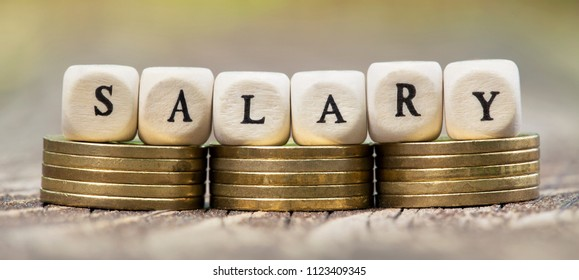 Salary money currency - web banner idea