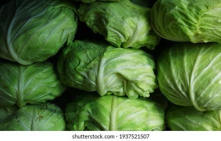salatiga, Indonesia – march 17, 2021: defocused abstract backgroud of cabbage vegetables