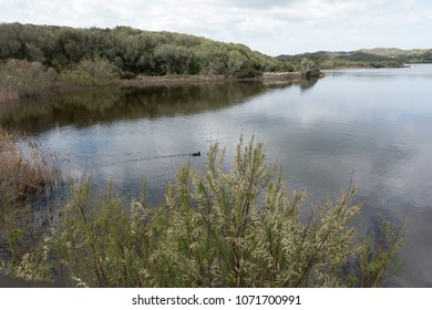 S'Albufera, natural park in Menorca, Balearic Islands, Spain