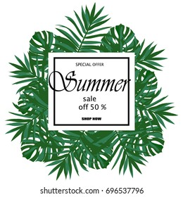 Sale banner, poster with palm leaves, jungle leaf and handwriting lettering. Floral tropical summer background.  illustration
