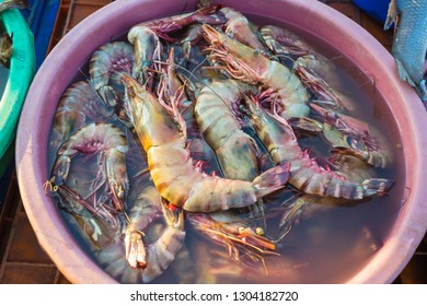 Sale of shrimp in the markets of different cities of Goa and other states of India