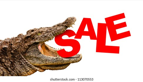 Sale text eaten by crocodile for sale, crash or discount. Clipping path included! Ready for print or web page.