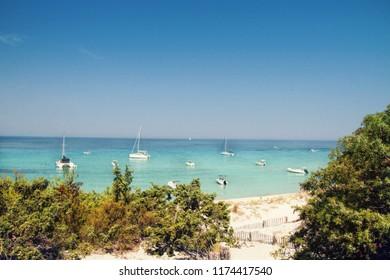 Saleccia - the most beautiful beach of Corsica, near Saint Florent