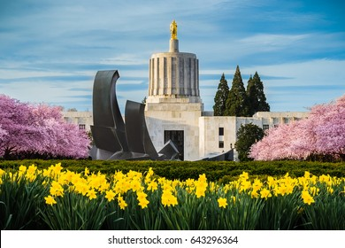 SALEM OREGON-USA-MARCH 23, 2016: OREGON STATE CAPITOL BUILDING, dedicated on October 1, 1938, as seen from the capitol mall during spring cherry blossom bloom.