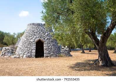 In Salento area, south of Italy, a traditional rural warehouse named Furnieddhu in local dialect. It's a traditional building made of stone in olives agricultural area.