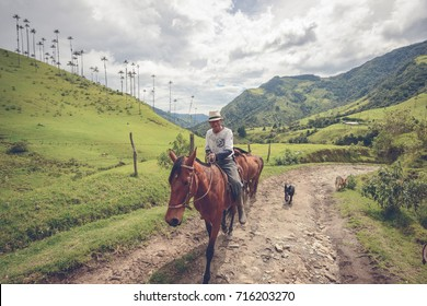 SALENTO, COLOMBIA - APRIL 20, 2014: Local farmer in the Cocora Valley near Salento, Colombia