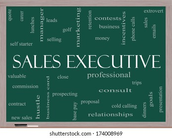 Sales Executive Word Cloud Concept on a Blackboard with great terms such as quote, career, prospecting and more.