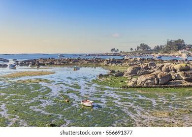 Salga coastal rocks at low tide in Arousa Island