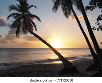 SalinesBeach  is one of the most of the island of Martinique. It is located to the south. The weekends are hundreds of people who go there to spend the day.