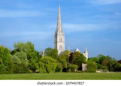 Salisbury Cathedral With Green Park In Spring Season, Salisbury, England