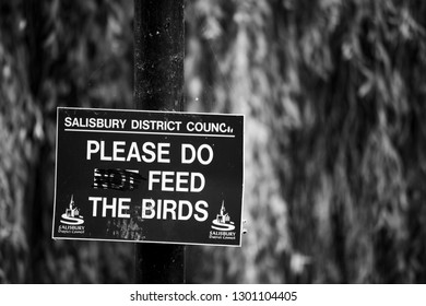 Salisbury, Wiltshire, England - December 18, 2018: monochrome defaced Salisbury district council do not feed the birds sign
