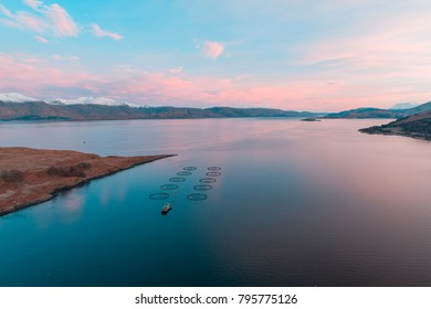 Salmon Farm Fishery at Sunrise in Scotland