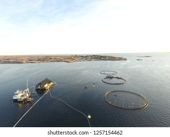Salmon farm at North Sea in Norway