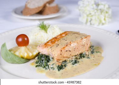 Salmon fillet in sauce on a white plate