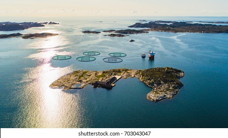 Salmon fish farm. Hordaland, Norway.