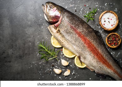 Salmon fish. Raw salmon fish whole with ingredients for cookings on black stone table. Top view with copy space.