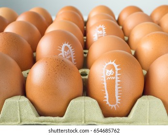 Salmonella bacterium drawn on the chicken eggs concept