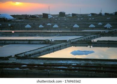 Salt Collecting in Slovenia