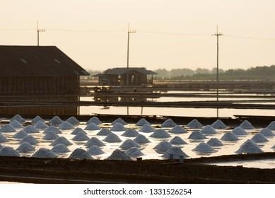 Salt farm in morning time