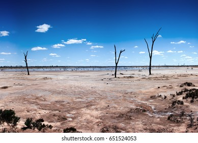 Salt Lake. Desiccated area created by fire and rising salt levels caused by historic deforestation.