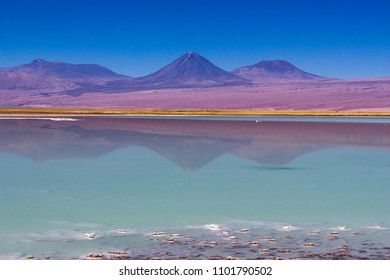 Salt lakes inside Atacama Desert at Chile in the middle of the Andes with an amazing view over Licancabur Volcano