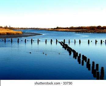 A Salt Marsh.