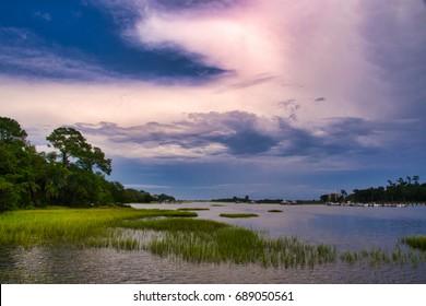 Salt Marsh with Cord-grass