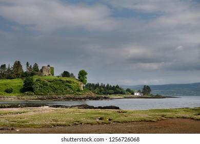 Salt marsh grass with Sea Thrift on shore of Sound of Mull with 13th century ruin of Aros Castle near Salem Isle of Mull Inner Hebrides Scotland UK