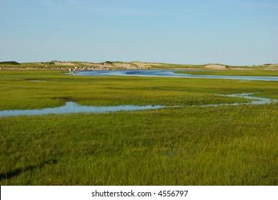 Salt marsh on Cape Cod, Massachusetts
