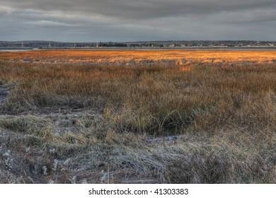 Salt marsh in a setting sun