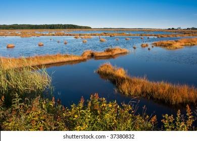 Salt Marsh at sunset in Scarborough, Maine
