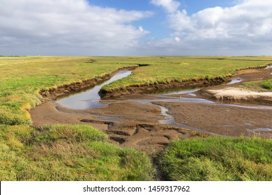 Salt marsh with tidal creek at low tide at the North Sea near Sankt Peter-Ording in Schleswig-Holstein, Germany. Landscape in the Schleswig-Holstein Wadden Sea National Park.