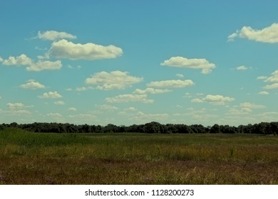 Salt marsh under a beautiful cloudscape in Lower Saxony, Northern Germany at the Wadden Sea. Dynamic, colorful background.