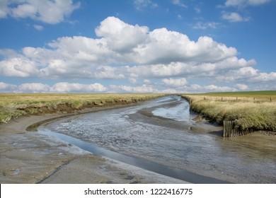 Salt Marsh in Westerhever at North Sea on Eiderstedt Peninsula,Schleswig-Holstein,Germany