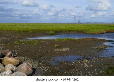 Salt marshes at low tide arround the island of Mandø in the wadden Sea of Denmark.